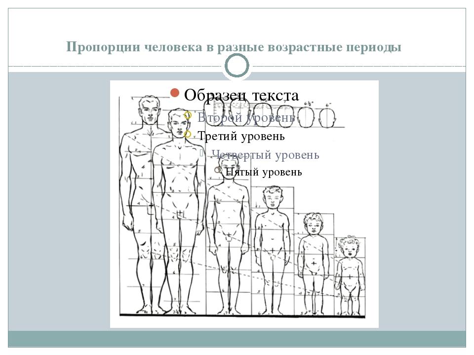 Пропорции человека в разные возрастные периоды