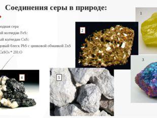 Соединения серы в природе: Самородная сера Серный колчедан FeS2 Медный колчед
