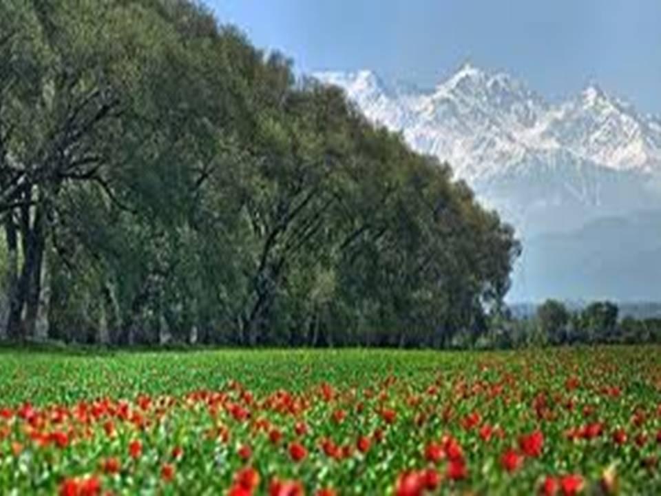 http://900igr.net/datas/geografija/Moja-rodina-Kazakhstan/0002-002-Moja-rodina-Kazakhstan.jpg