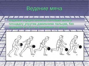 Ведение мяча Ведение осуществляется толчками мяча в площадку упругим движение
