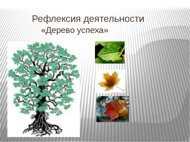 Рефлексия деятельности «Дерево успеха»