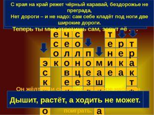 н о а к м е и н е т с а о к р э с о м и к с к е в л е ч п е з е п с о л е ц д