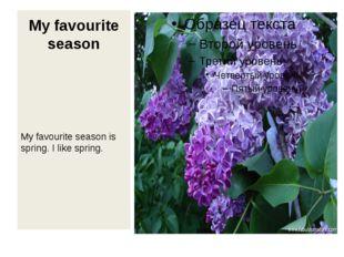 My favourite season My favourite season is spring. I like spring.