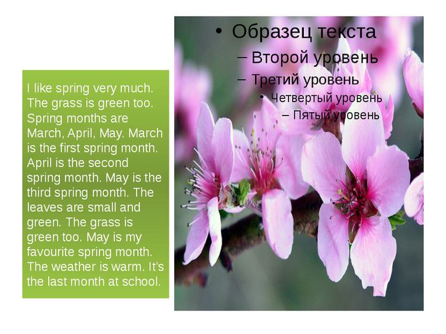 I like spring very much. The grass is green too. Spring months are March, Ap...
