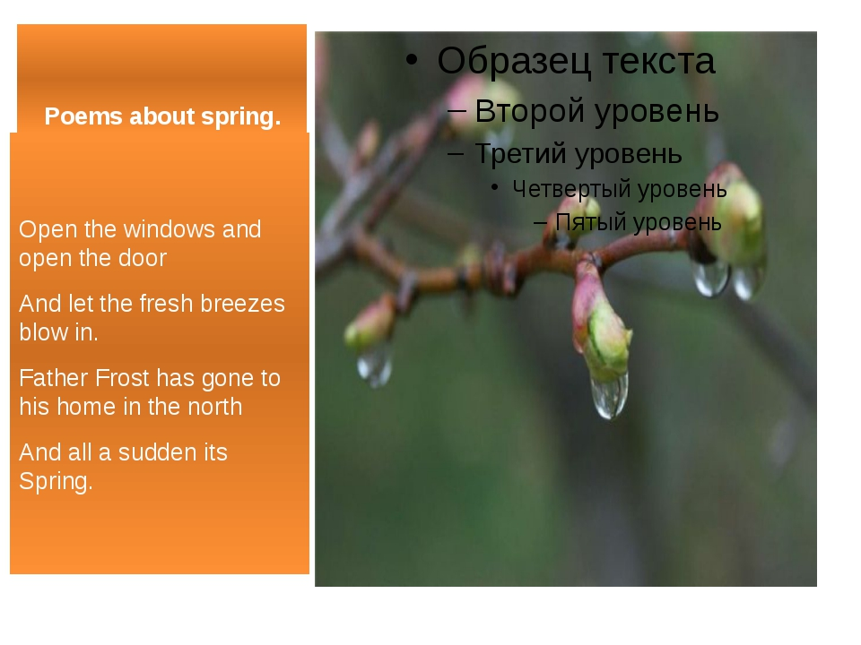 Poems about spring. Open the windows and open the door And let the fresh bree...