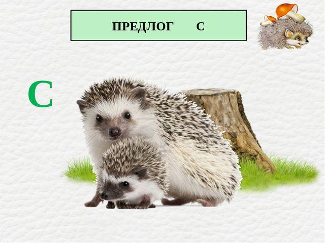 ПРЕДЛОГ С С