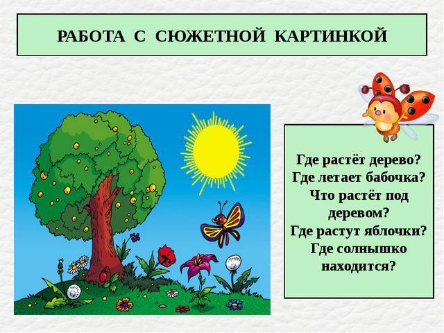 Где растёт дерево? Где летает бабочка? Что растёт под деревом? Где растут яб...