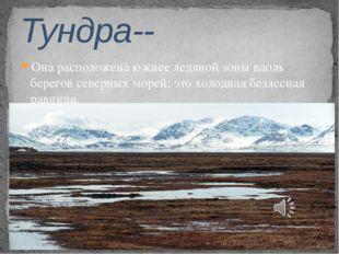 Она расположена южнее ледяной зоны вдоль берегов северных морей; это холодная