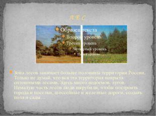 Л Е С Зона лесов занимает больше половины территории России. Только не думай