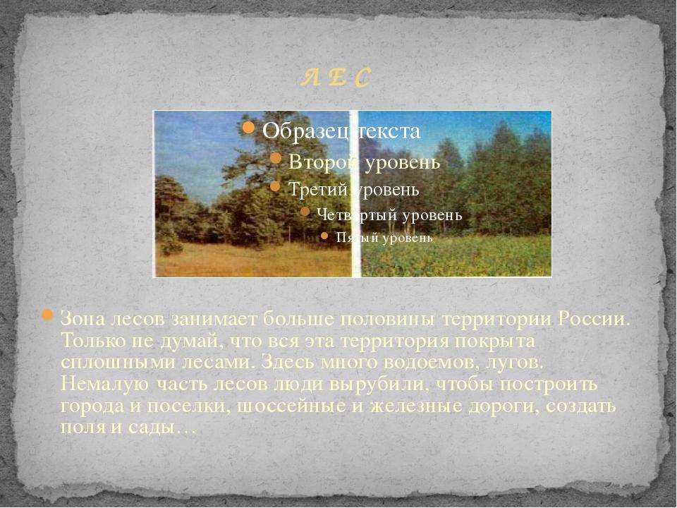 Л Е С Зона лесов занимает больше половины территории России. Только не думай...