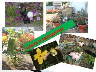 Цвети и процветай!