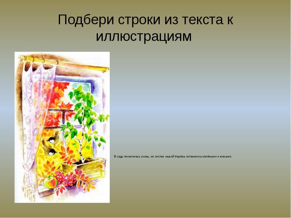 Подбери строки из текста к иллюстрациям