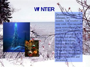 WINTER December, January and February are winter months. The weather is very