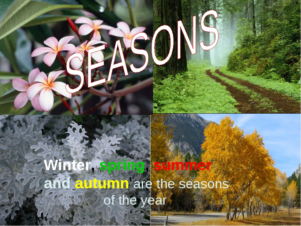 Winter, spring, summer and autumn are the seasons of the year
