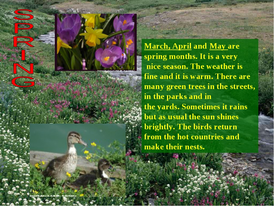 March, April and May are spring months. It is a very nice season. The weather...
