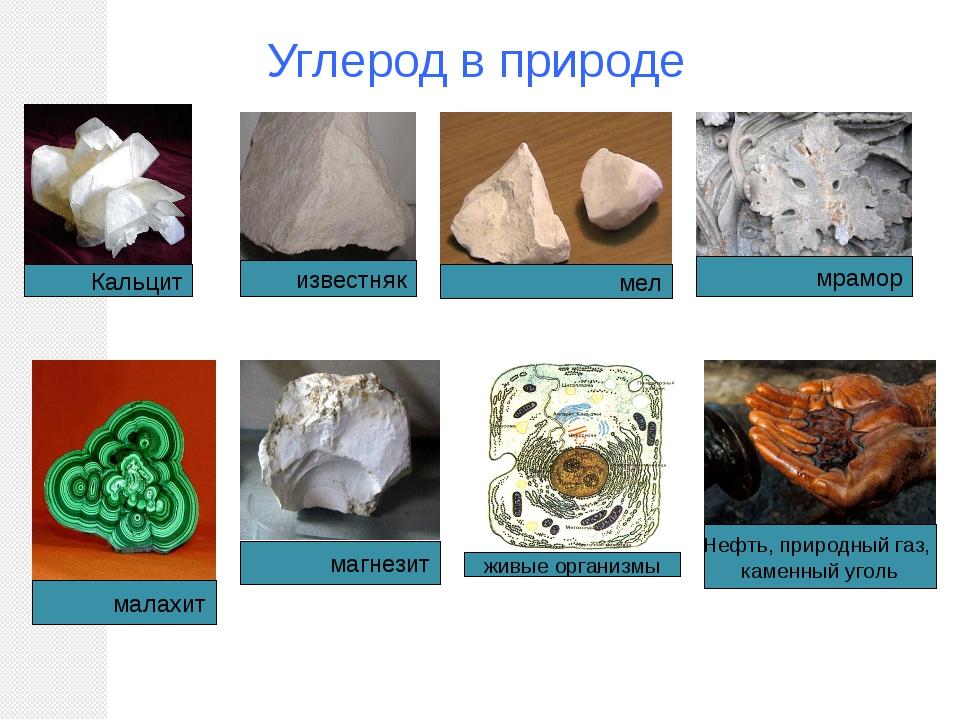 Углерод в природе Кальцит мел мрамор известняк малахит магнезит живые организ...