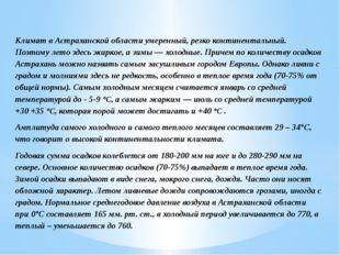 Климат в Астраханской области умеренный, резко континентальный. Поэтому лето