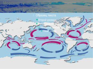 Морские течения влияют на климат материков