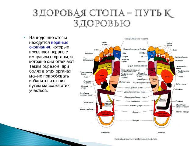 На подошве стопы находятся нервные окончания, которые посылают нервные импуль...