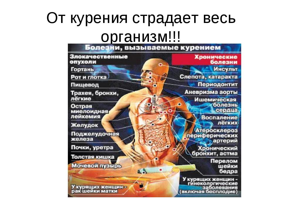 От курения страдает весь организм!!!