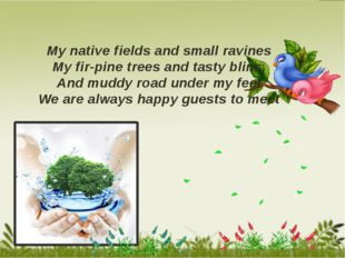 My native fields and small ravines My fir-pine trees and tasty blins, And mu