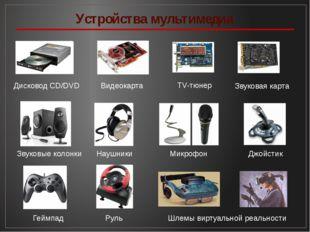 Устройства мультимедиа Дисковод CD/DVD Видеокарта TV-тюнер Звуковая карта Зву