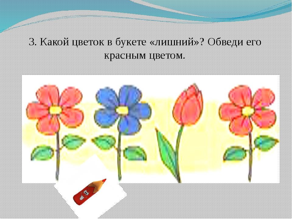 3. Какой цветок в букете «лишний»? Обведи его красным цветом.