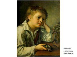 Мальчик с мёртвым щеглёнком