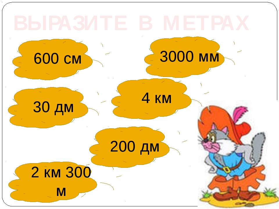 ВЫРАЗИТЕ В МЕТРАХ 600 см 3000 мм 4 км 30 дм 200 дм 2 км 300 м