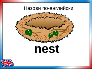 Назови по-английски nest