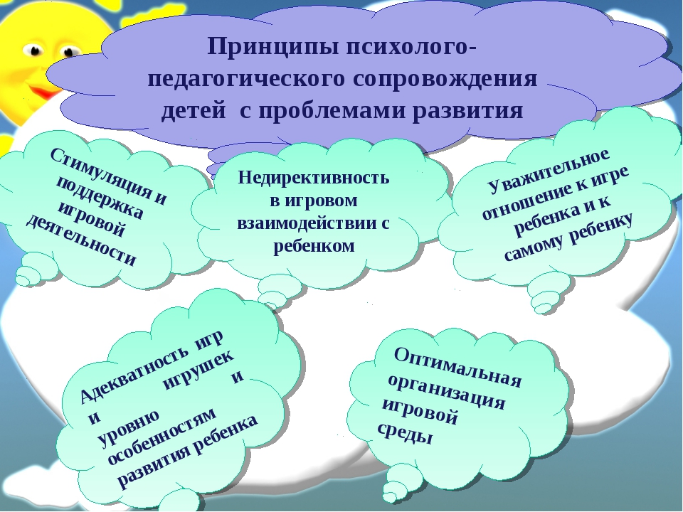 Принципы психолого-педагогического сопровождения детей с проблемами развития...