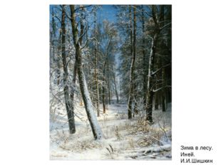 Зима в лесу. Иней. И.И.Шишкин