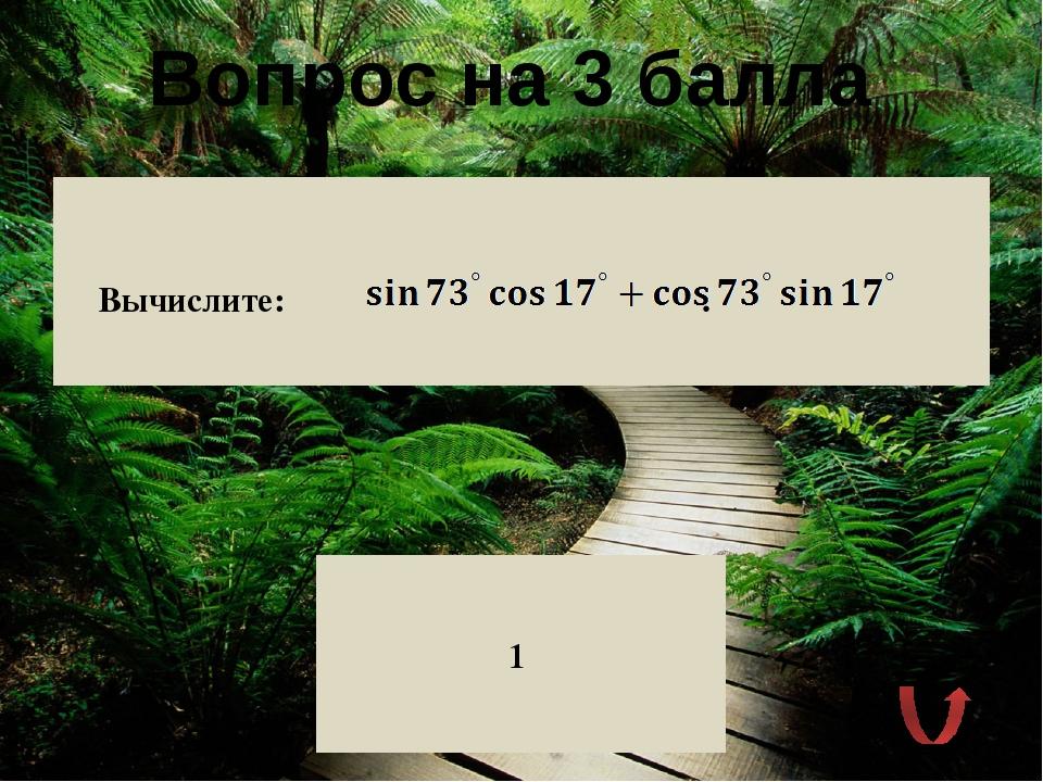 Вопрос на 2 балла Какова геометрическая интерпретация косинуса числового арг...