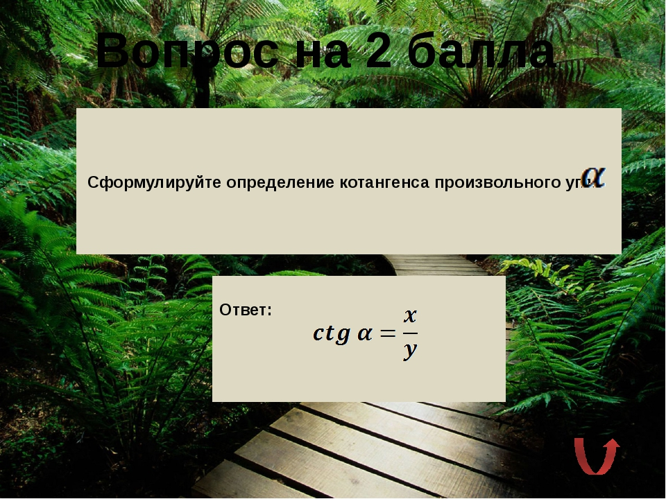 Вопрос на 5 балла Решите уравнение .