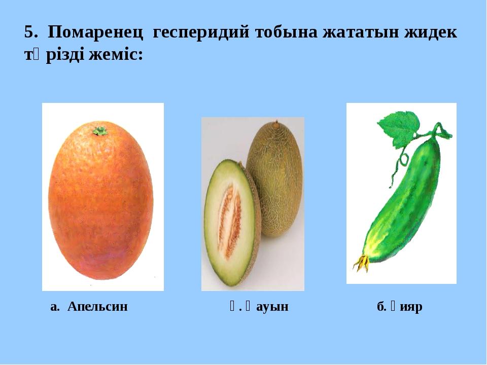 5. Помаренец гесперидий тобына жататын жидек тәрізді жеміс: а. Апельсин ә. Қа...