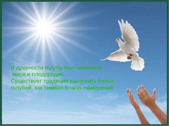 В древности голубь был символом мира и плодородия. Существует традиция выпус...