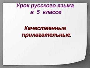 Урок русского языка в 5 классе Качественные прилагательные.