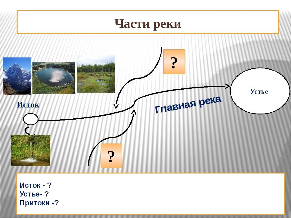 Части реки Устье- Исток - ? Устье- ? Притоки -? Исток Главная река ? ?