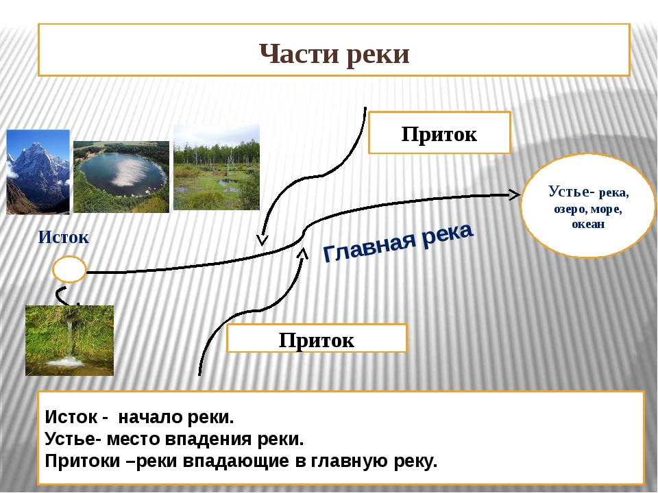 Части реки Устье- река, озеро, море, океан Исток - начало реки. Устье- место...