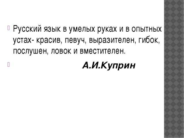 Русский язык в умелых руках и в опытных устах- красив, певуч, выразителен, ги...