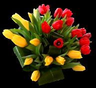http://img-fotki.yandex.ru/get/6442/102699435.87c/0_a1b45_d5dec2a3_L.png.jpg