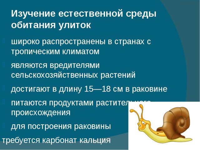 Изучение естественной среды обитания улиток широко распространены в странах с...