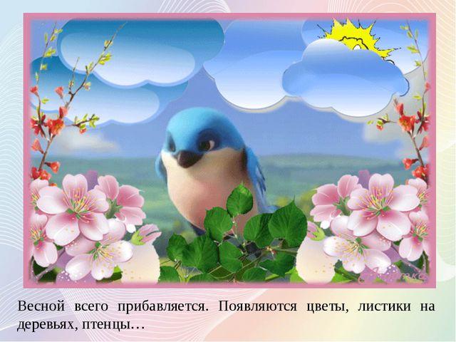 Весной всего прибавляется. Появляются цветы, листики на деревьях, птенцы…