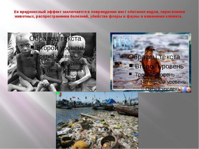 Ее вредоносный эффект заключается в повреждении мест обитания видов, переселе...