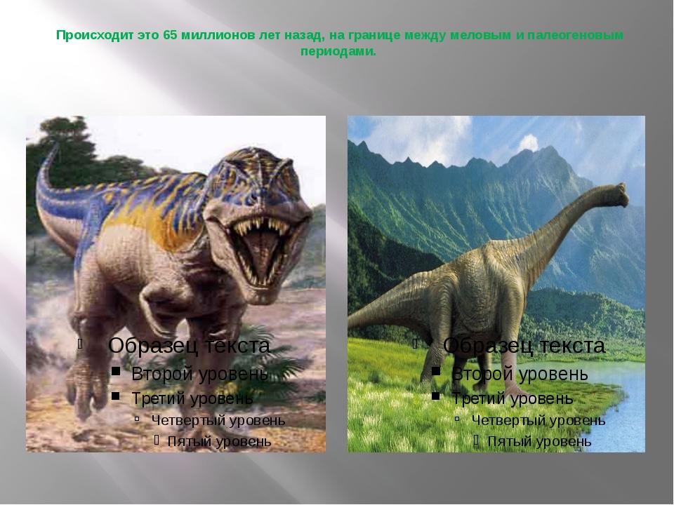 Происходит это 65 миллионов лет назад, на границе между меловым и палеогеновы...