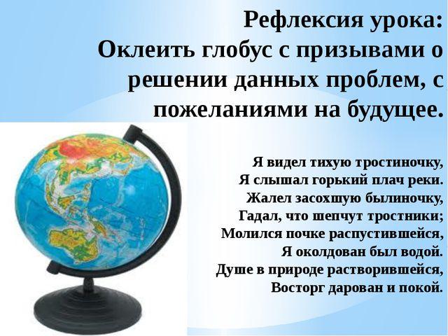 Рефлексия урока: Оклеить глобус с призывами о решении данных проблем, с поже...