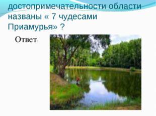 №14 Какие достопримечательности области названы « 7 чудесами Приамурья» ? Отв