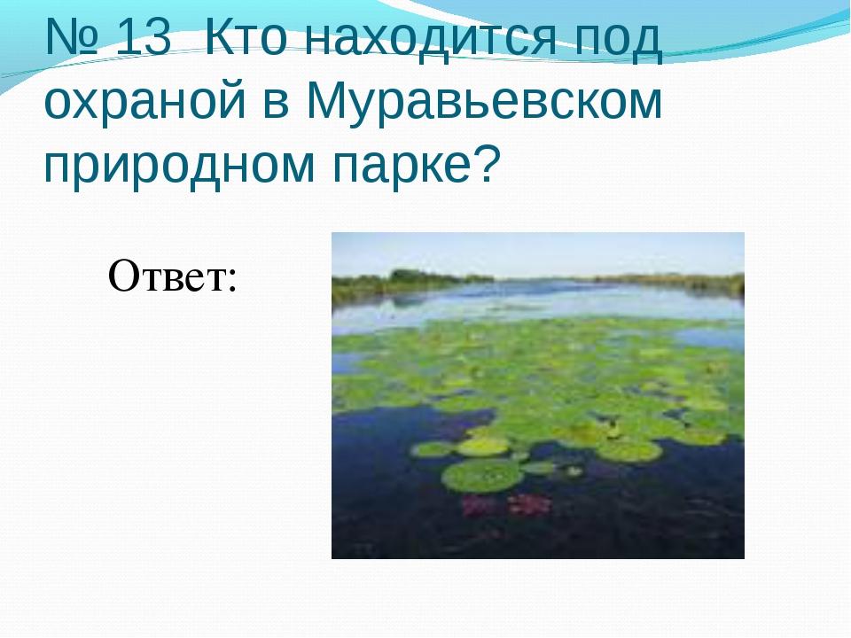 № 13 Кто находится под охраной в Муравьевском природном парке? Ответ: