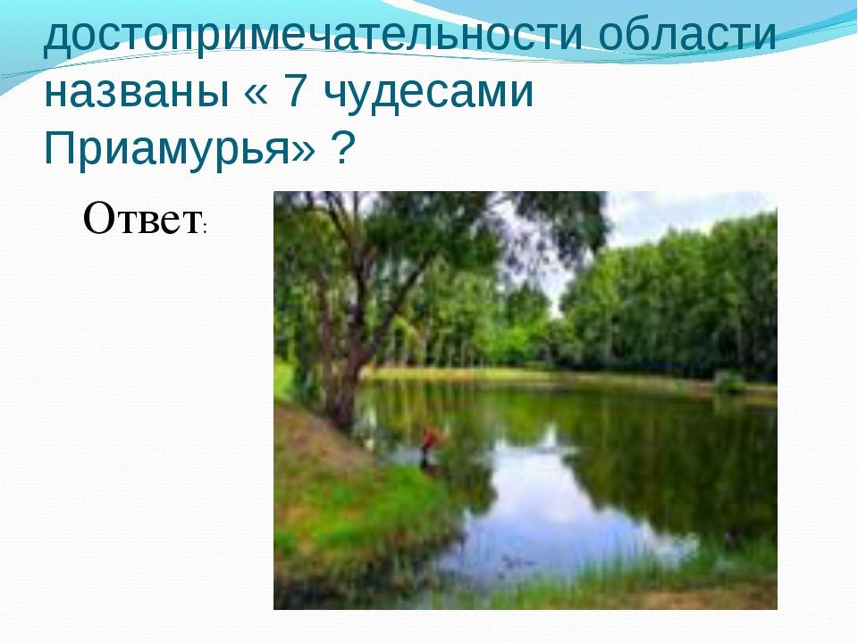 №14 Какие достопримечательности области названы « 7 чудесами Приамурья» ? Отв...
