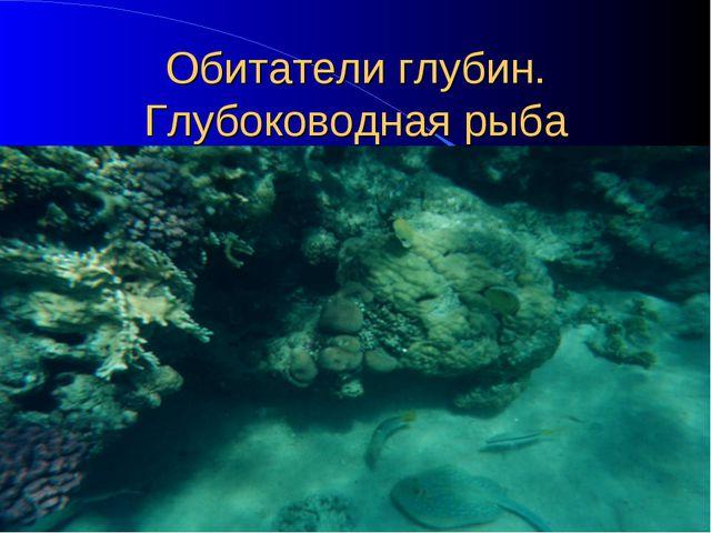 Обитатели глубин. Глубоководная рыба
